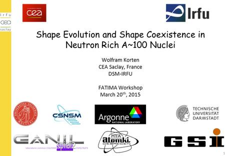 Shape Evolution and Shape Coexistence in Neutron Rich A~100 Nuclei