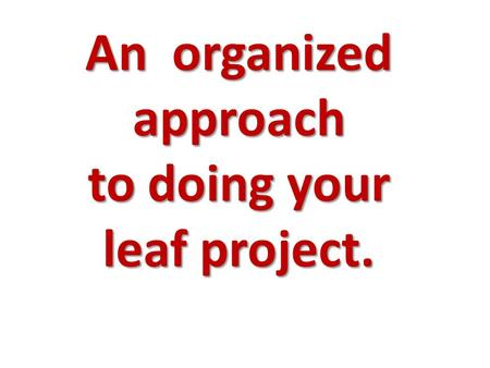 An organized approach to doing your leaf project..