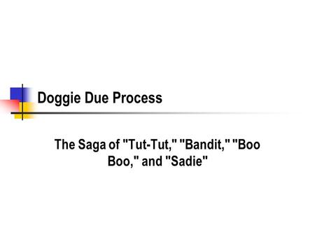 Doggie Due Process The Saga of Tut-Tut, Bandit, Boo Boo, and Sadie