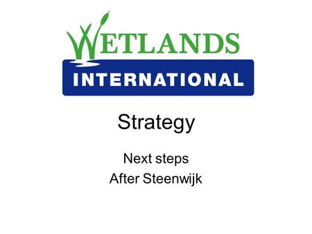 Strategy Next steps After Steenwijk. Strategic Intent – by end April Finalise excel strategy contributions table Check/ adjust numbers in the CTs Agree.