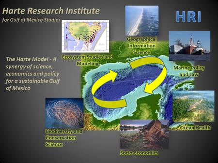 Harte Research Institute for Gulf of Mexico Studies The Harte Model - A synergy of science, economics and policy for a sustainable Gulf of Mexico.