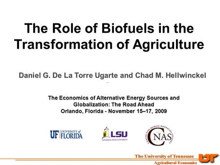 The Role of Biofuels in the Transformation of Agriculture Daniel G. De La Torre Ugarte and Chad M. Hellwinckel The Economics of Alternative Energy Sources.