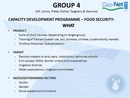 GROUP 4 (JM, Carlos, Pieter, Esther, Taigbenu & Yasmina) CAPACITY DEVELOPMENT PROGRAMME – FOOD SECURITY:WHAT PRODUCT -Suite of short courses (depending.
