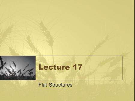 Lecture 17 Flat Structures. Aeration for Flat Structures Ideally - uniform air flow – dead zones –min. of.2 cfm design rate (this is double) –fines.