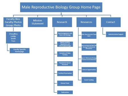 Male Reproductive Biology Group Home Page Faculty Bios Faculty Photos Group Photo Choudhry Lishko Smith Tran Faculty Specific Homepage Mission Statement.
