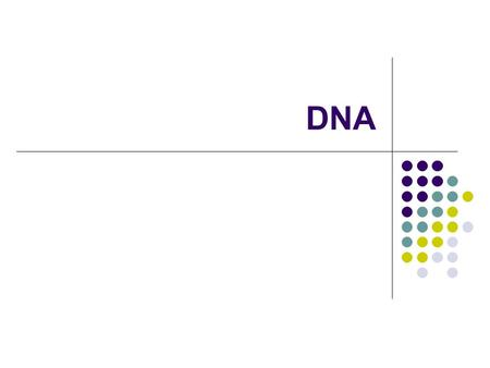 DNA. What does DNA stand for? Deoxyribonucleic Acid DNA stores genetic information in the nucleus. DNA is the genetic blueprint, or recipe, for making.