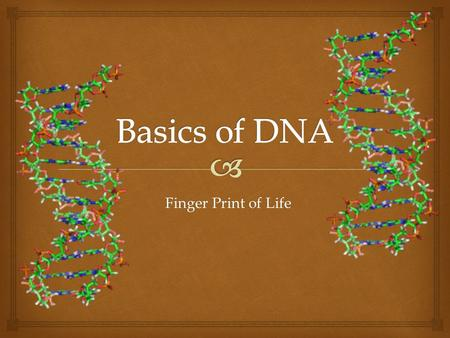 Finger Print of Life.  What does DNA look like?  macroscopic view:  nanoscopic view:
