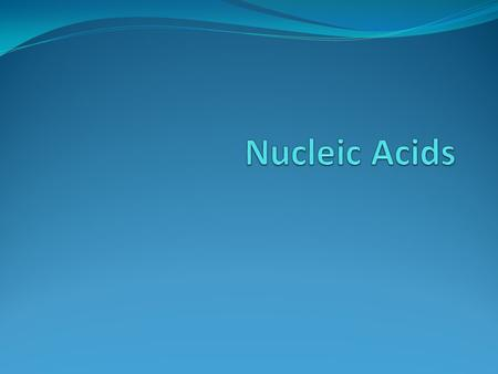 Make-up Nucleic acids form DNA (deoxyribonucleic acid) and RNA (ribonucleic acid) Nucleic acids are polymers, made up of smaller monomers called nucleotides.