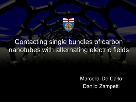 Contacting single bundles of carbon nanotubes with alternating electric fields Marcella De Carlo Danilo Zampetti.