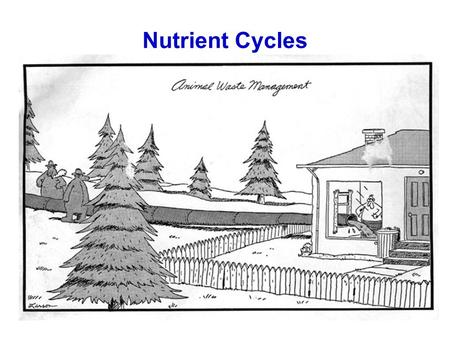 Nutrient Cycles.