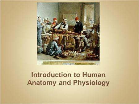 Introduction to Human Anatomy and Physiology. Anatomy – the structure of body parts (also called Morphology) Physiology – the function of the body parts,