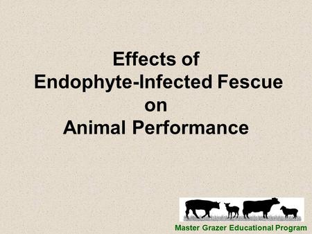Effects of Endophyte-Infected Fescue on Animal Performance Master Grazer Educational Program.