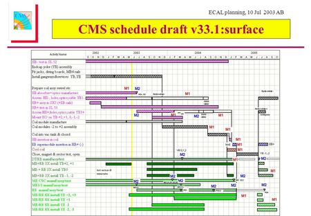 ECAL planning, 10 Jul 2003 AB CMS schedule draft v33.1:surface.
