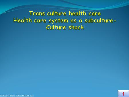 Lecture 6: Trans cultural health care 1 1. 2 2 Sub Cultures  It refer to a smaller group within a larger cultural group that has its own particular set.