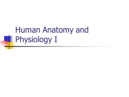 Human Anatomy and Physiology I. Dr. Diane M. Gilmore LSE 415 Phone: 680-8083