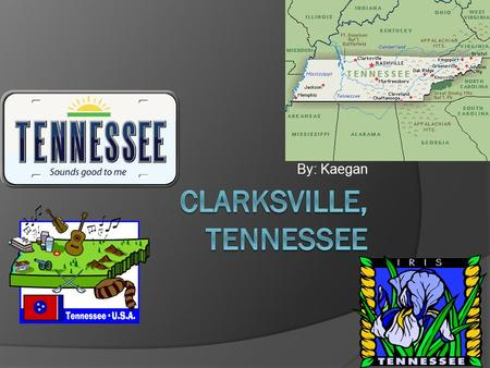 By: Kaegan Plants and animals and buildings! Tennessee Area and Population  Tennessee is an area that covers 42,143 square miles (109,247 sq. kilometers),