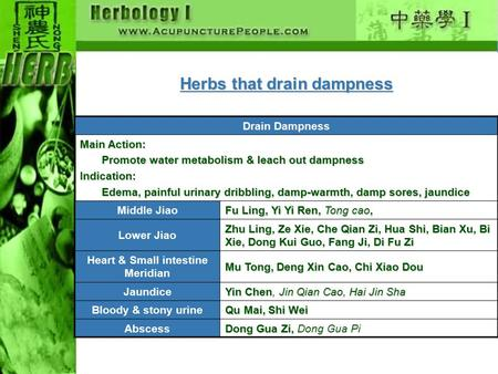 Herbs that drain dampness Drain Dampness Main Action: Promote water metabolism & leach out dampness Promote water metabolism & leach out dampnessIndication: