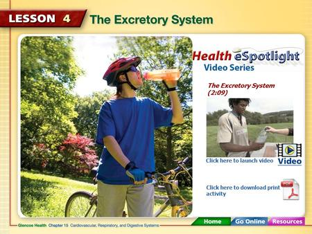 The Excretory System (2:09) Click here to launch video Click here to download print activity.