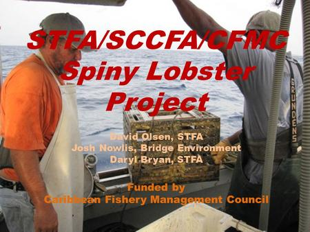 STFA/SCCFA/CFMC Spiny Lobster Project David Olsen, STFA Josh Nowlis, Bridge Environment Daryl Bryan, STFA Funded by Caribbean Fishery Management Council.