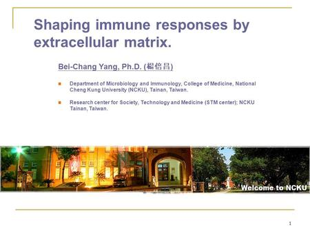 1 Shaping immune responses by extracellular matrix. Bei-Chang Yang, Ph.D. ( 楊倍昌 ) Department of Microbiology and Immunology, College of Medicine, National.