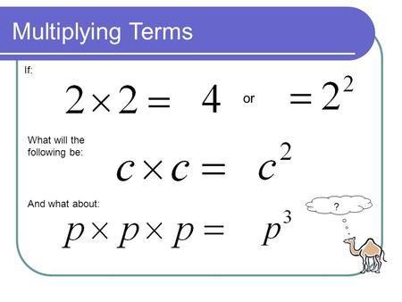 If: What will the following be: And what about: Multiplying Terms or ?