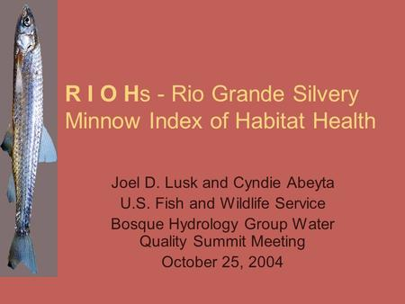 R I O Hs - Rio Grande Silvery Minnow Index of Habitat Health Joel D. Lusk and Cyndie Abeyta U.S. Fish and Wildlife Service Bosque Hydrology Group Water.