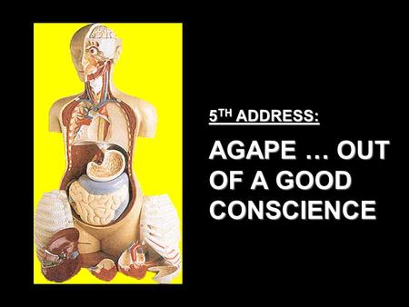 5 TH ADDRESS: AGAPE … OUT OF A GOOD CONSCIENCE. SELF DECEPTION YOUR CONSCIENCE LIFE EXPERIENCES LOWER COURT SPIRITUAL RESOURCES HUMAN RESOURCES UPPER.