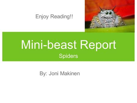 Mini-beast Report Spiders By: Joni Makinen Enjoy Reading!!