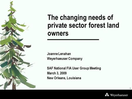 Joanne Lenahan Weyerhaeuser Company SAF National FIA User Group Meeting March 3, 2009 New Orleans, Louisiana 1 The changing needs of private sector forest.
