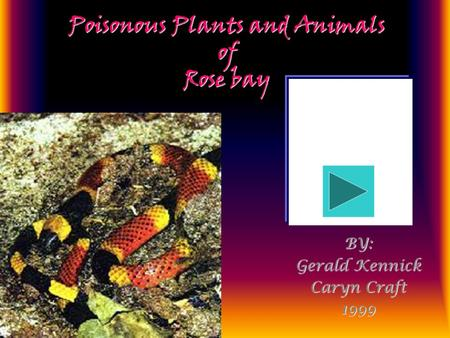 Poisonous Plants and Animals of Rose bay BY: Gerald Kennick Caryn Craft 1999.