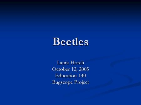 Beetles Laura Horch October 12, 2005 Education 140 Bugscope Project.