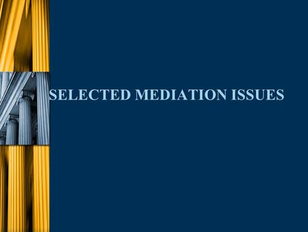 SELECTED MEDIATION ISSUES. u Each Mediation is Different n Evaluation of Case l Counsel n Personalities n Experience n Knowledge of controlling facts/law.