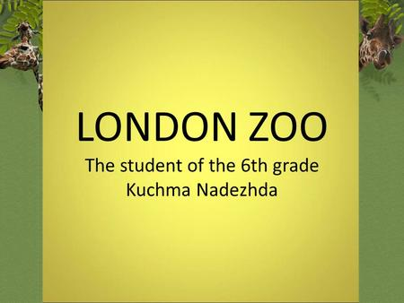 LONDON ZOO The student of the 6th grade Kuchma Nadezhda.