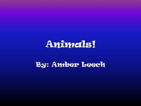 Animals! By: Amber Leech. Sharks! Sharks are a type of fish with full cartilaginous skeleton and a highly streamlined body. The teeth of carnivorous are.