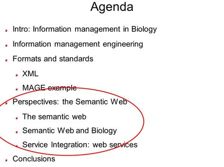 Agenda Intro: Information management in Biology Information management engineering Formats and standards XML MAGE example Perspectives: the Semantic Web.