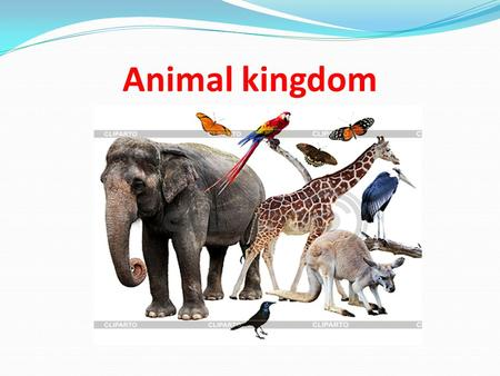 Animal kingdom. We shall know the names of some reptiles; the names of some mammals; what they can/can`t do.