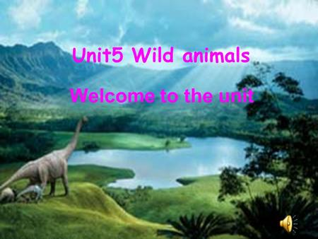 Unit5 Wild animals Welcome to the unit. chicken cat bird dog horse duck.