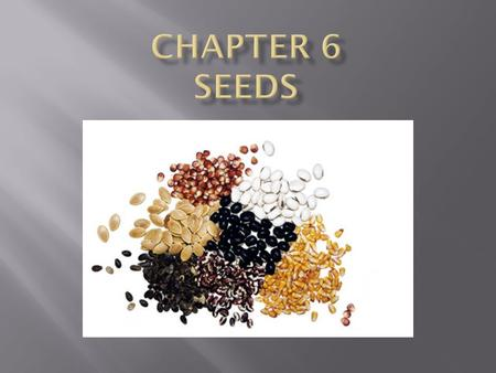  Production of seeds  Seed Coat - protection  Endosperm – stored plant food  Embryo – embryonic plant.
