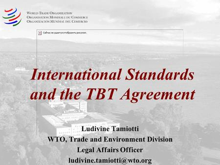 International Standards and the TBT Agreement Ludivine Tamiotti WTO, Trade and Environment Division Legal Affairs Officer