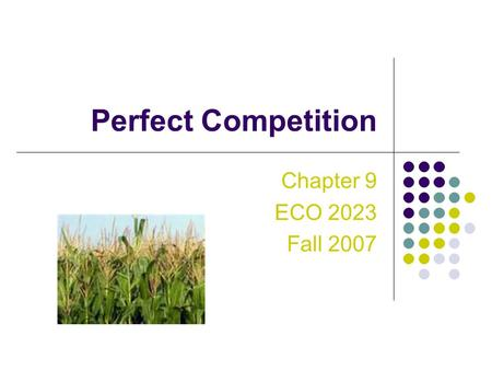 Perfect Competition Chapter 9 ECO 2023 Fall 2007.