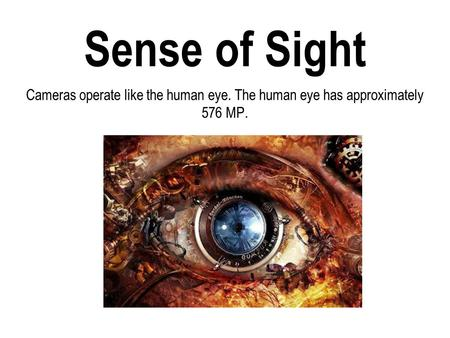 Sense of Sight Cameras operate like the human eye. The human eye has approximately 576 MP.