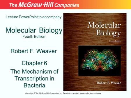 Molecular Biology Fourth Edition Chapter 6 The Mechanism of Transcription in Bacteria Lecture PowerPoint to accompany Robert F. Weaver Copyright © The.