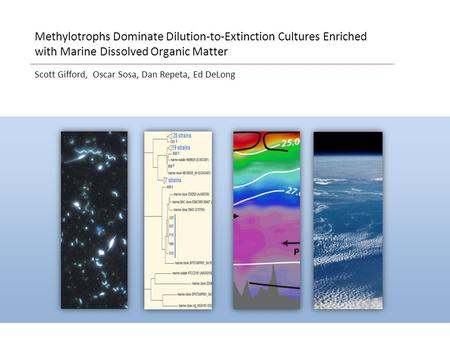 Scott Gifford, Oscar Sosa, Dan Repeta, Ed DeLong Methylotrophs Dominate Dilution-to-Extinction Cultures Enriched with Marine Dissolved Organic Matter.