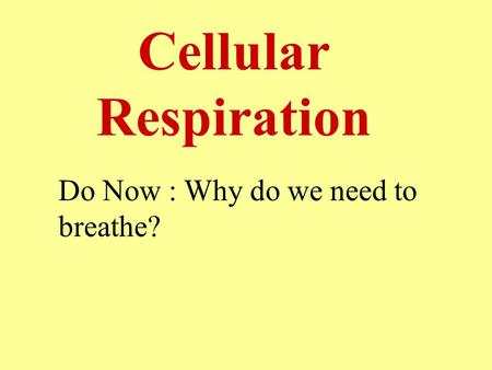 Cellular Respiration Do Now : Why do we need to breathe?