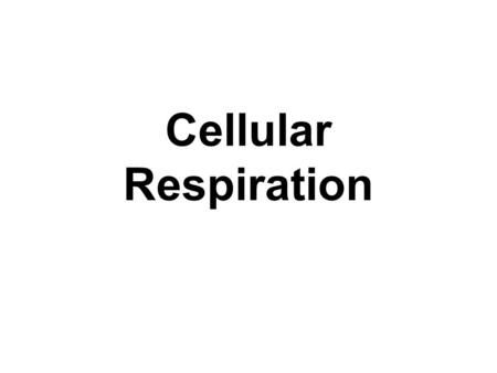 Cellular Respiration. What we will cover Adenosine triphosphate ATP is the immediate source of energy for most cellular processes ATP breaks down to ADP.