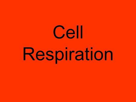 Cell Respiration Cell Respiration is a process your cells do to make energy. You need to breathe in order for your cells to do the process of cell respiration.