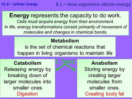 Energy represents the capacity to do work. Cells must acquire energy from their environment. In life, energy transformations consist primarily of movement.