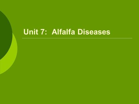 Unit 7: Alfalfa Diseases.  Bacterial Wilt Occurs when conditions are right for rapid, vigorous growth Symptoms  Reduced stand  Dwarfing of infected.
