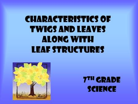 Characteristics of Twigs and leaves Along with Leaf Structures 7 TH GRADE SCIENCE.