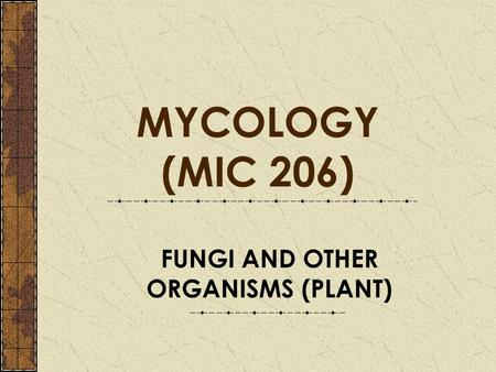 FUNGI AND OTHER ORGANISMS (PLANT) MYCOLOGY (MIC 206)